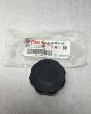Fuse cap Yamaha oem electric box